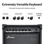Donner DKA-20 AMP 20-Watt Keyboard Amplifier 2