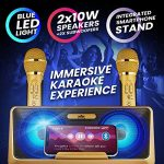 KaraoKing New 2020 Karaoke Machine – for Adults and Kids – 2 Wireless Karaoke Microphone, SD Card, USB, Bluetooth Compatible, LED Lights – Home, Bachelor Party, Picnic, Outdoor/Indoor [G301 Gold] 3