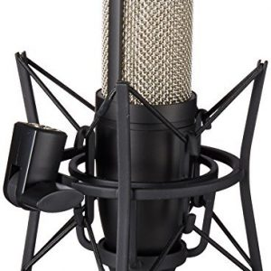 AKG Perception Professional Studio Microphone