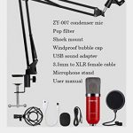 ZINGYOU Condenser Microphone Bundle, ZY-007 Professional Cardioid Studio Condenser Mic Include Adjustable Suspension Scissor Arm Stand, Shock Mount and Pop Filter, Studio Recording & Broadcasting 1