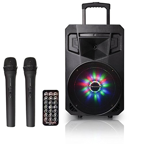 Portable Bluetooth PA Speaker with 2 Free Microphones, AM/FM Radio