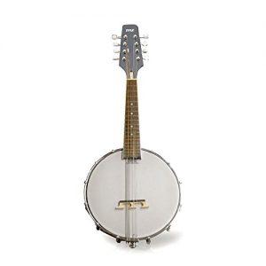 Mandolin String Instrument w/White Jade Tuner Pegs