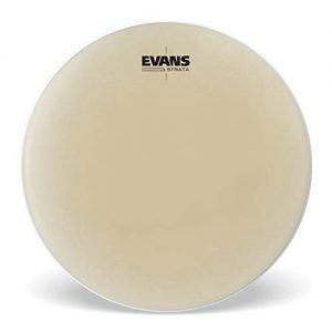 Evans Strata Series Timpani Drum Head, 22 inch