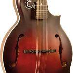 The Loar LM-310F-BRB Honey Creek F-Style Mandolin