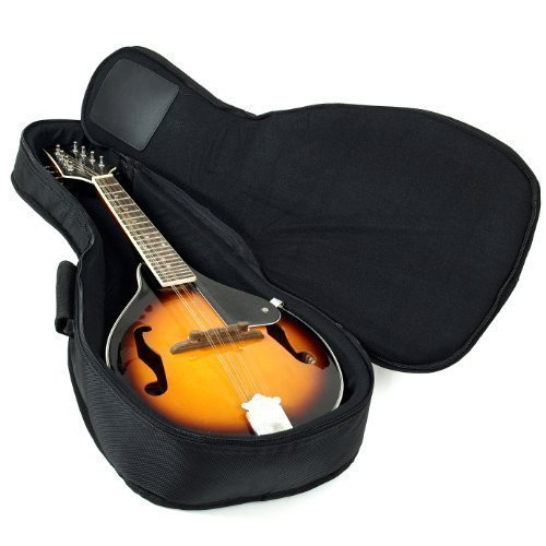 Heavy Duty A & F Style Mandolin Gig Bag