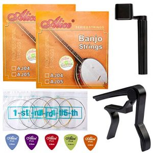 Banjo Strings, Yoklili 2 Sets of 5-String Plated Steel Banjo Strings Set, Light, 09-20, Bonus 5 Matte Nylon Standard Picks, String Winder and Capo included